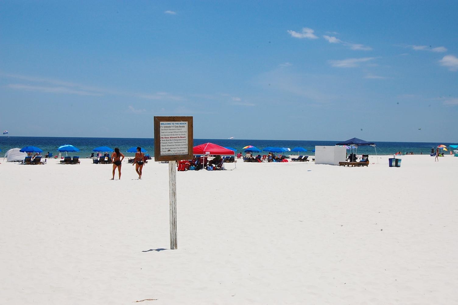 Castaways 3B Condo rental in Castaways Gulf Shores in Gulf Shores Alabama - #6
