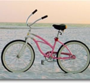 30-A Bike Rentals in Highway 30-A Florida