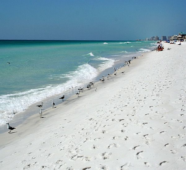 Destin-Vacation-Rentals-Destiny-by-the-Sea-8368876.jpg