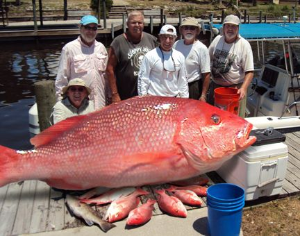 Mexico Beach Charters in Mexico Beach Florida