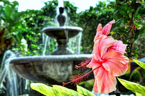 Courtyard Bradenton Sarasota/Riverfront - https://www.beachguide.com/anna-maria-island-vacation-rentals-courtyard-bradenton-sarasotariverfront--1718-0-20168-5121.jpg?width=185&height=185
