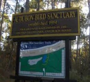 Audubon Sanctuary on Dauphin Island in Gulf Shores Alabama