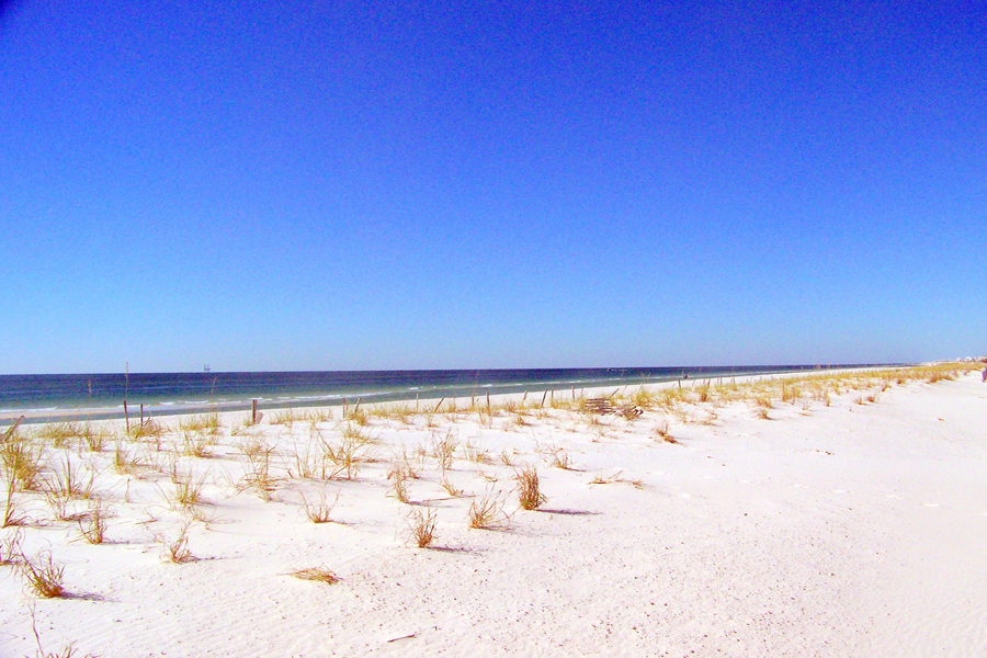 Brown Pelican East House / Cottage rental in Gulf Shores House Rentals in Gulf Shores Alabama - #20