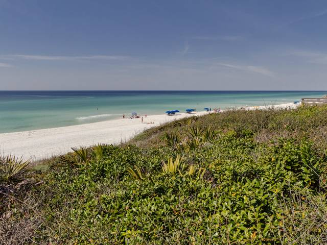 Coral Reef #107 Condo rental in Seagrove Beach House Rentals in Highway 30-A Florida - #42