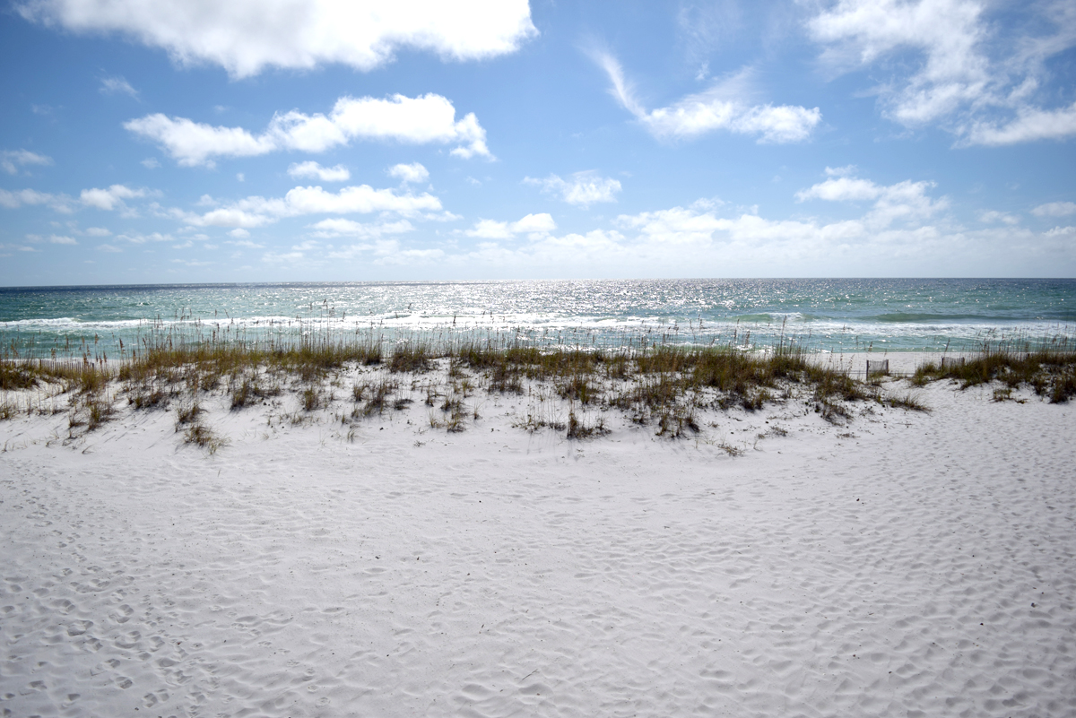 Ensenada Siete 1770 - Casa Solana House / Cottage rental in Pensacola Beach House Rentals in Pensacola Beach Florida - #6