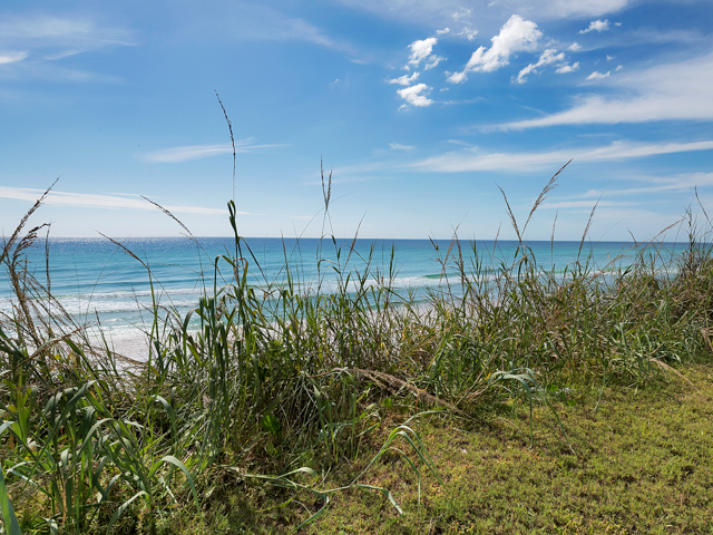 Family Ties Condo rental in Seagrove Beach House Rentals in Highway 30-A Florida - #32