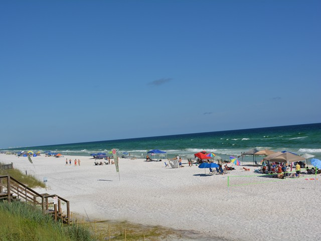 Mermaids' Rest Condo rental in Seagrove Beach House Rentals in Highway 30-A Florida - #58