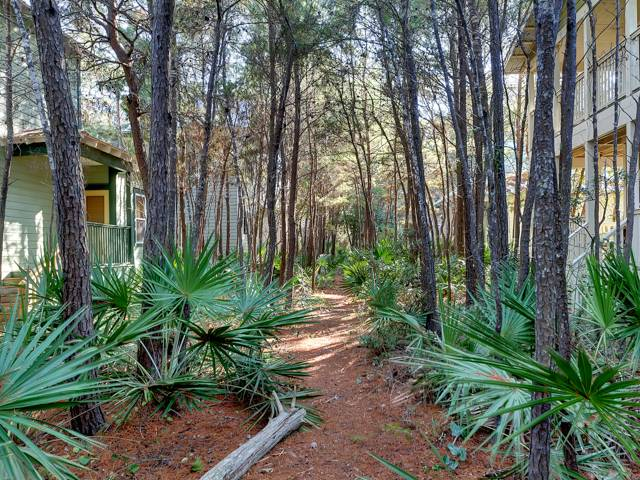 Quietude Condo rental in Seagrove Beach House Rentals in Highway 30-A Florida - #23
