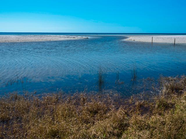 Quietude Condo rental in Seagrove Beach House Rentals in Highway 30-A Florida - #34