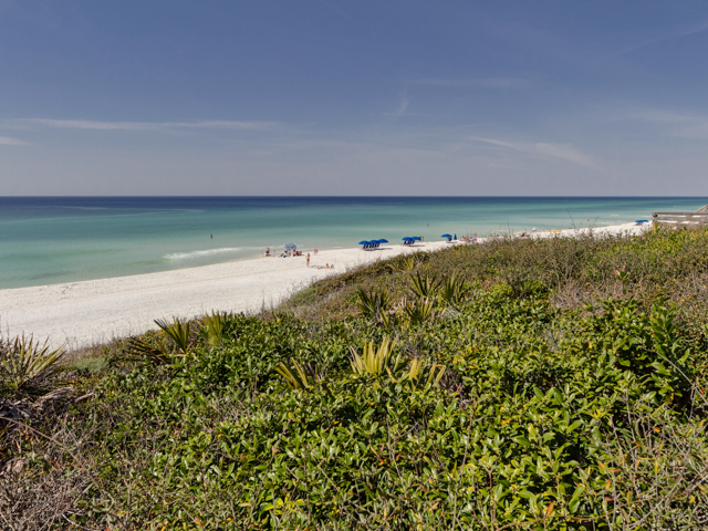 Sea Turtle Pass Condo rental in Seagrove Beach House Rentals in Highway 30-A Florida - #48