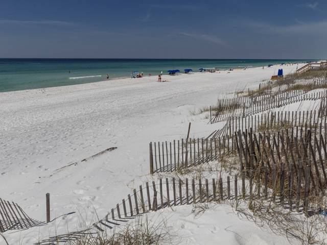 Sea Turtle Pass Condo rental in Seagrove Beach House Rentals in Highway 30-A Florida - #51