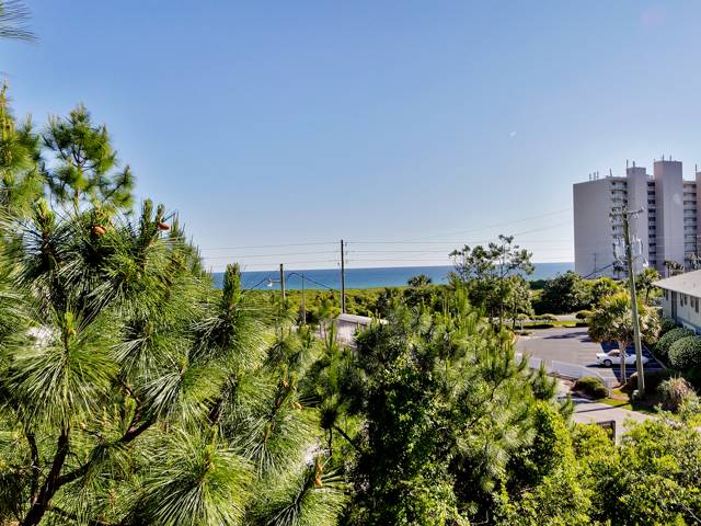 Sugar Paws Condo rental in Seagrove Beach House Rentals in Highway 30-A Florida - #2