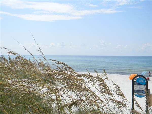 Surfer Dog House/Cottage rental in Panama City Beach House Rentals in Panama City Beach Florida - #48