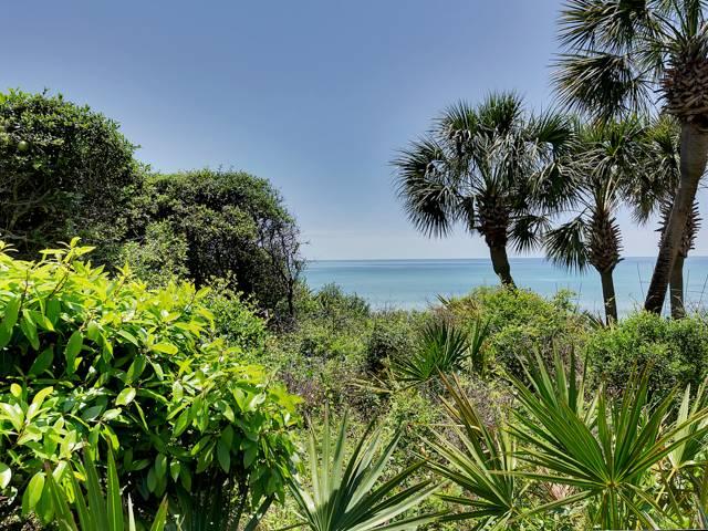 Beachcrest 102 Condo rental in Beachcrest Condos ~ Seagrove Beach Condo Rentals by BeachGuide in Highway 30-A Florida - #23