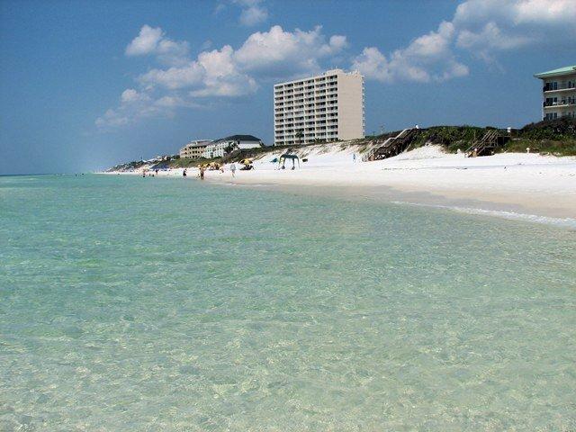 Beachcrest 1203 Condo rental in Beachcrest Condos ~ Seagrove Beach Condo Rentals by BeachGuide in Highway 30-A Florida - #42