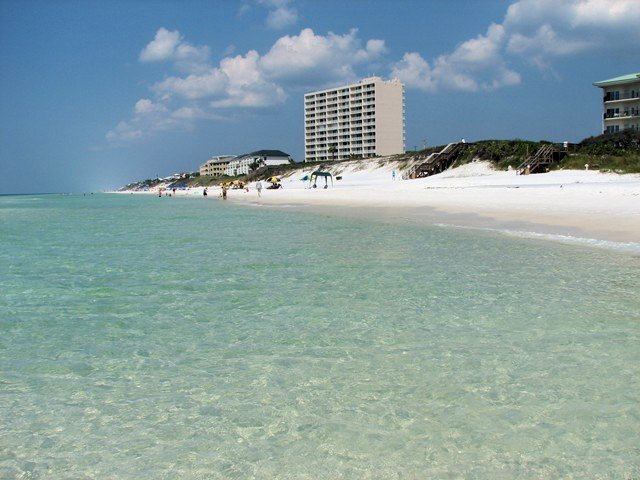 Beachcrest 203 Condo rental in Beachcrest Condos ~ Seagrove Beach Condo Rentals by BeachGuide in Highway 30-A Florida - #35