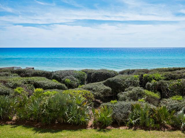 Beachcrest 205 Condo rental in Beachcrest Condos ~ Seagrove Beach Condo Rentals by BeachGuide in Highway 30-A Florida - #1
