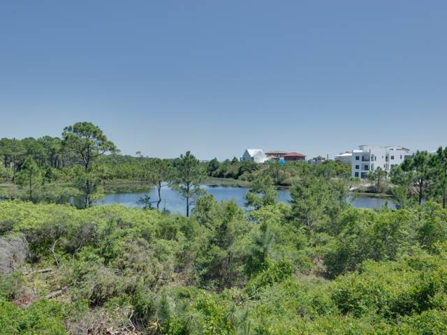 Beachfront II 201 Condo rental in Beachfront II  ~ Seagrove Beach Condo Rentals by BeachGuide in Highway 30-A Florida - #2