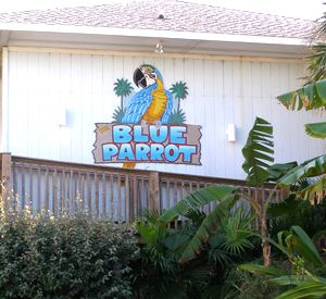 Blue Parrot Oceanfront Cafe in St. George Island Florida