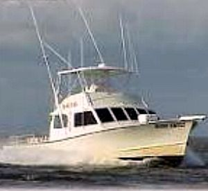 Boss Charters in Apalachicola Florida