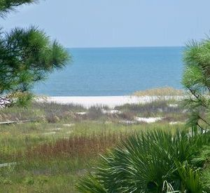 Gulf Coast Vacation Rentals in Cape San Blas Florida