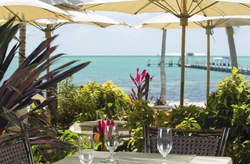 Cheeca Lodge & Spa in Islamorada FL 11