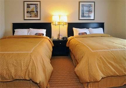 Comfort Suites Panama City Beach in Panama City Beach FL 71