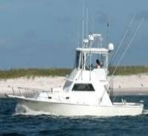 Cool Breeze Charters in Orange Beach Alabama