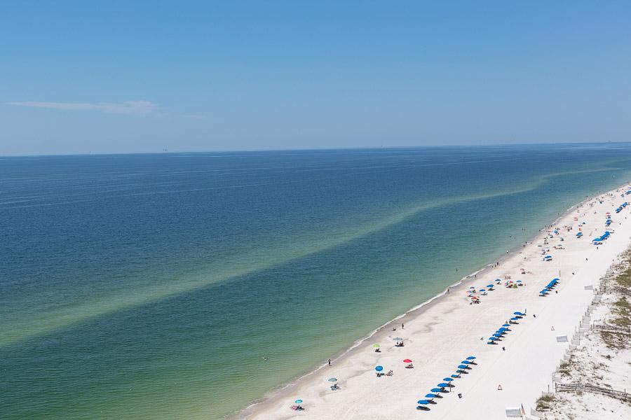 Crystal Shores West #1303 Condo rental in Crystal Shores West  in Gulf Shores Alabama - #15