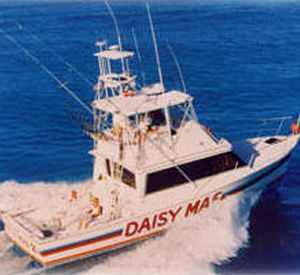 Daisy Mae Fishing Company in Clearwater Beach Florida