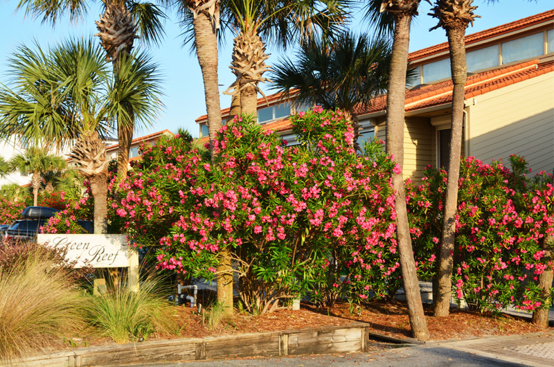 Green Reef Townhomes in Destin FL