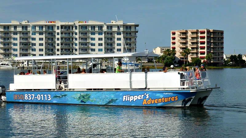 Dolphin Cruises in Destin Florida
