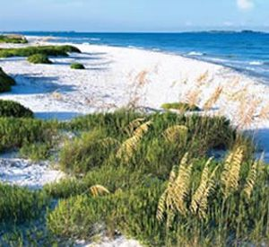 Fort DeSoto Park in St. Pete Beach Florida