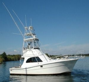 Good Times Charters - Gladiator in Orange Beach Alabama