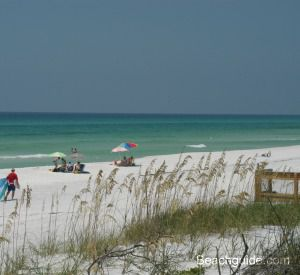 Grayton Beach State Park in Highway 30-A Florida