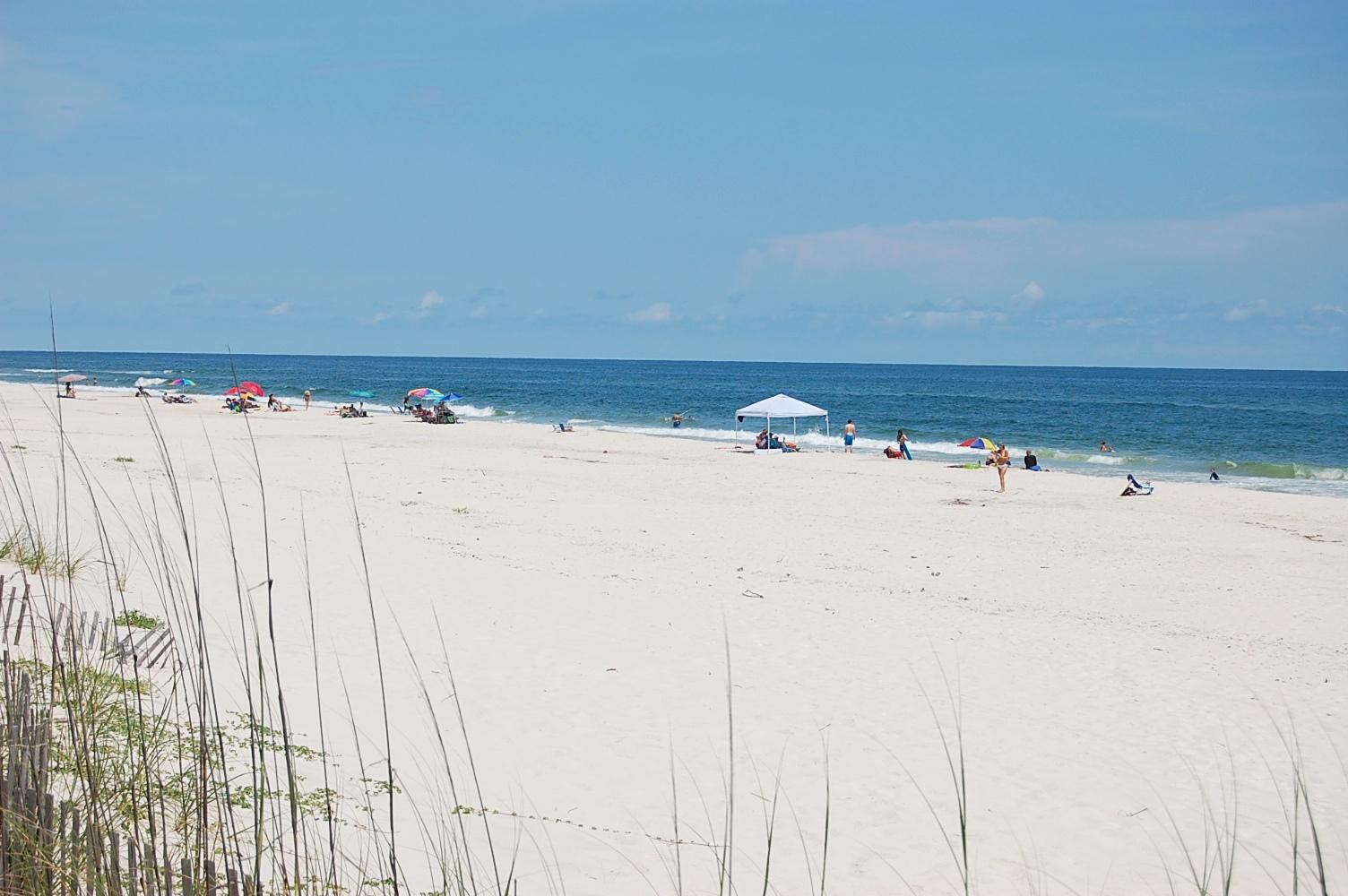 Gulf Shores Surf & Racquet 214 A Condo rental in Gulf Shores Surf and Racquet Club in Gulf Shores Alabama - #5