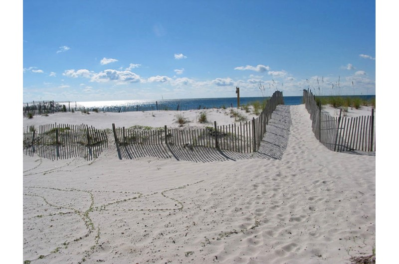 Nice sandy beach that goes directly to the Gulf from Caribbean Condos in Gulf Shores Alabama