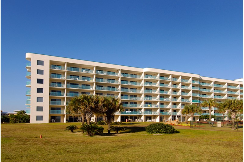 Plantation Palms in Gulf Shores Alabama