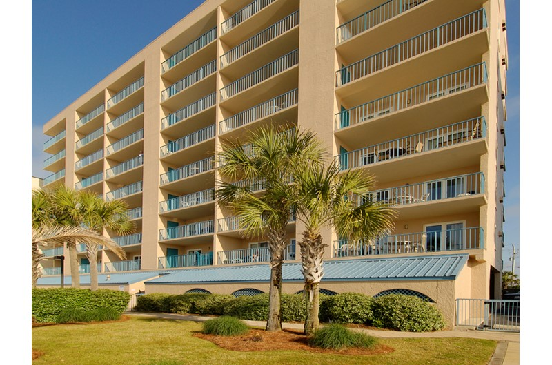 Nicely landscaped grounds with palm trees at Surfside Shores Gulf Shores