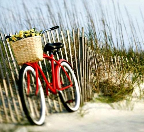 Beach Rentals at Seacrest Beach North in Highway 30-A Florida