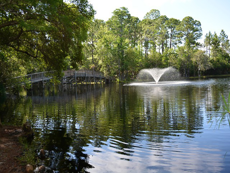 You will enjoy the peace and quiet of Cassine Station in Seagrove Beach FL