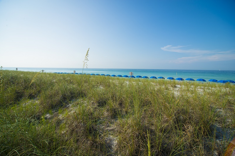 Holiday Surf & Racquet Club 105 Condo rental in Holiday Surf & Racquet Club in Destin Florida - #19
