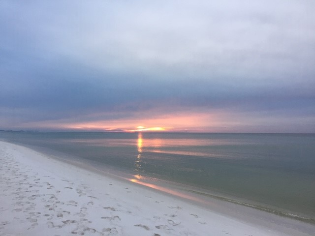 Holiday Surf & Racquet Club 106 Condo rental in Holiday Surf & Racquet Club in Destin Florida - #1