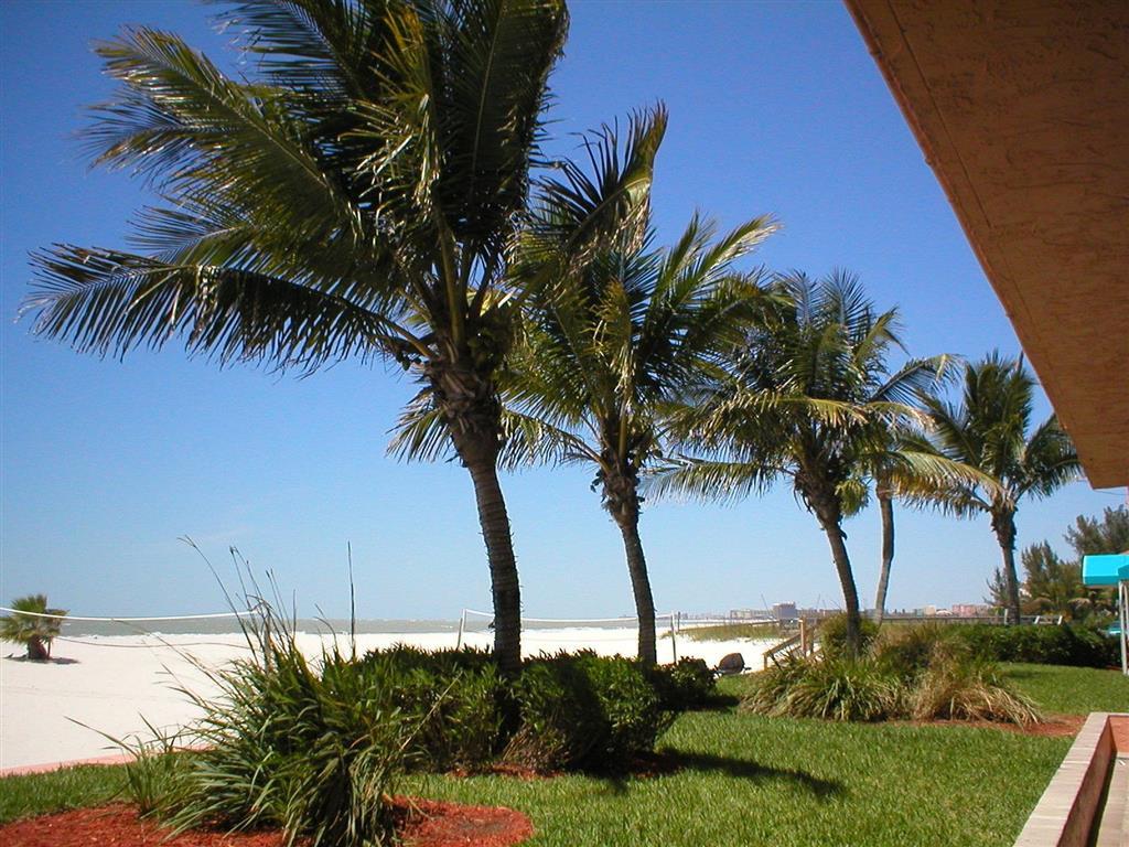 Island Inn Beach Resort in Treasure Island FL 40