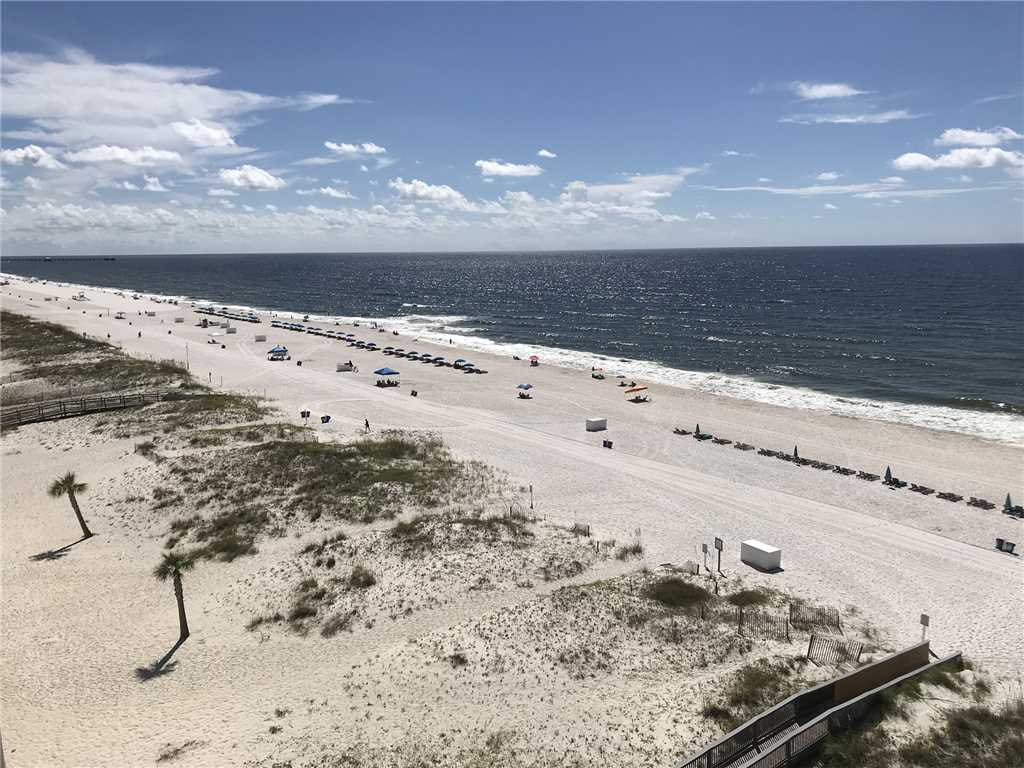 Island Tower  802 Condo rental in Island Tower - Gulf Shores in Gulf Shores Alabama - #18