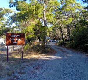 Longleaf Greenway Trail in Highway 30-A Florida