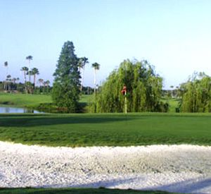 Mangrove Bay Golf Course in St. Pete Beach Florida