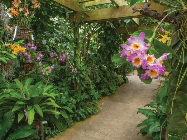 Marie Selby Botanical Gardens in Sarasota Florida