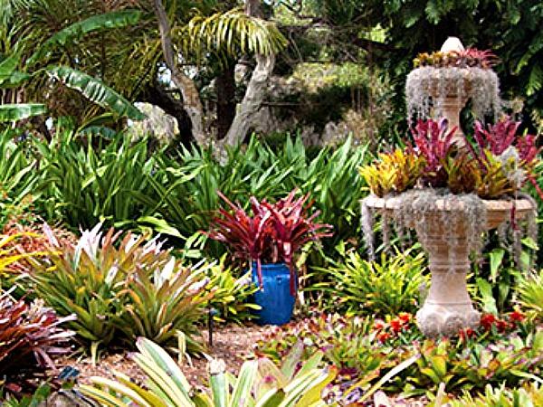Marie Selby Botanical Gardens in Siesta Key Florida