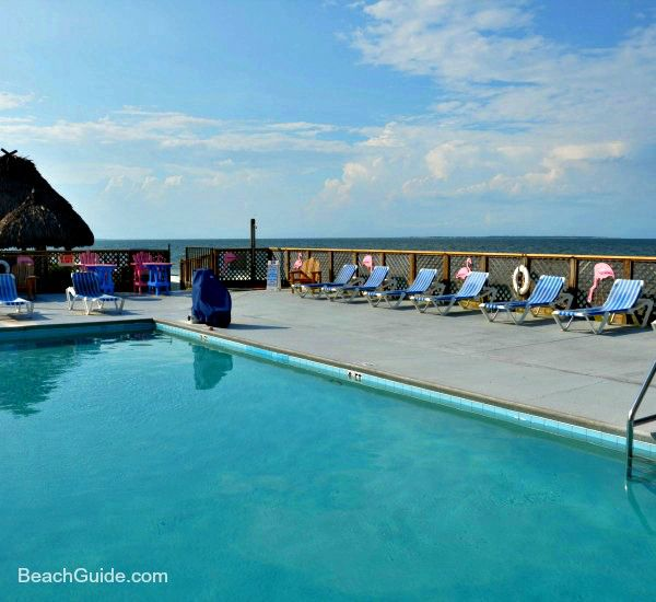 Gulf Of Mexico Vacation Spots In Texas: Hotel With Beachfront Pool And Bar